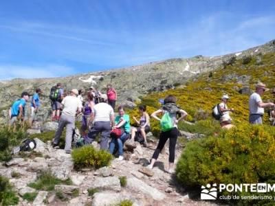 Ruta senderismo Peñalara - Parque Natural de Peñalara - Laguna Grande de Peñalara; senderismo fá